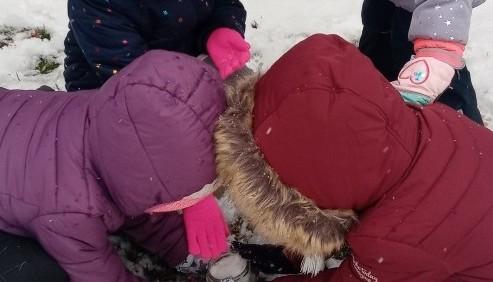 Obrazek newsa Zabawy badawcze ze śniegiem grupa Sowy